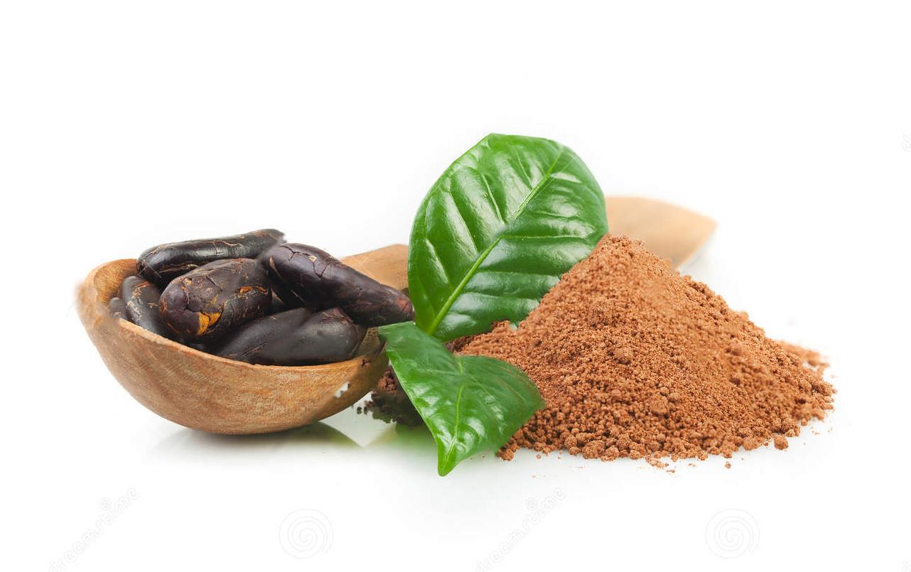 cocoa-powder-cocoa-beans-white-57287978